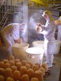 年に1度の特別な仕込み「寒仕込み」を実施<br>~ 伝統の技を守り続けてつくられる天然醸造味噌 ~