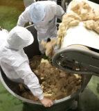 年に一度の伝統的な「大寒仕込み」を実施  ~ 味噌づくりのための国産大豆と銘米コシヒカリを使った、天然醸造長期熟成味噌 ~
